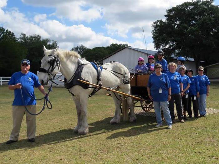 Carriage Driving Team Volunteers