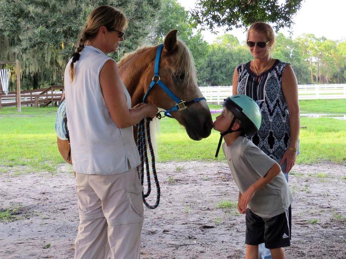Sarasota Equine Therapy