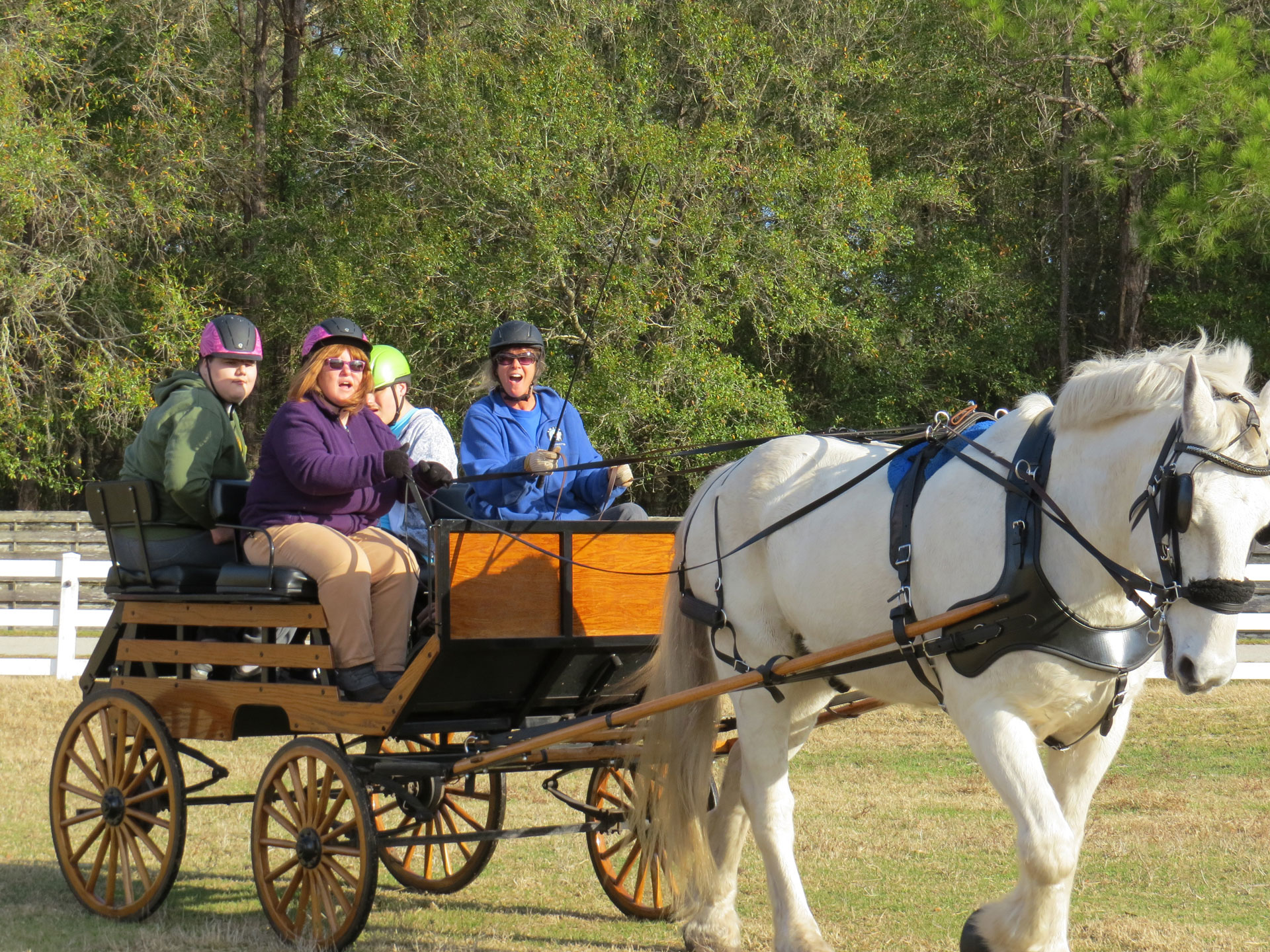 Charles and Margery Baracik Foundation Carriage Ride